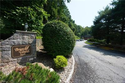 Ossining Condo/Townhouse For Sale: 10-3 Briarcliff Drive South