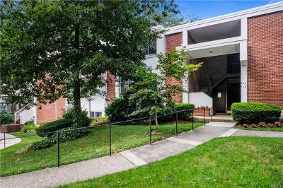 Hartsdale Condo/Townhouse For Sale: 713 Colony Drive #713