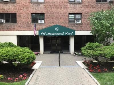 Commercial For Sale: 19 Old Mamaroneck Road