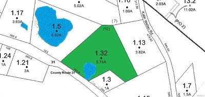 Glen Spey Residential Lots & Land For Sale: Lot 1.32 County Route 31