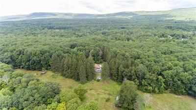 Dutchess County, Orange County, Sullivan County, Ulster County Single Family Home For Sale: 531 Awosting Road