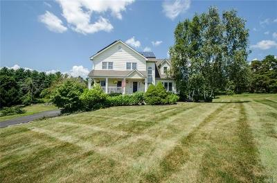Fishkill Single Family Home For Sale: 189 Windsor Road