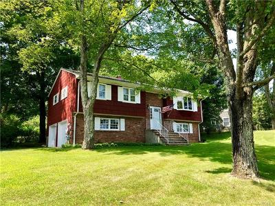 Dutchess County, Orange County, Sullivan County, Ulster County Single Family Home For Sale: 122 Hilltop Road