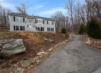 Stormville Single Family Home For Sale: 40 Cherry Lane