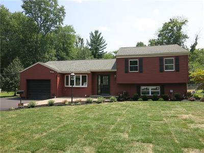 New City Single Family Home For Sale: 26 Windmill Lane