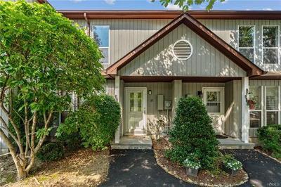 Peekskill Condo/Townhouse For Sale: 117 Hemlock Circle