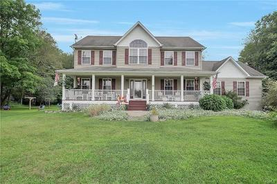 Washingtonville Single Family Home For Sale: 17 Salzburg Road