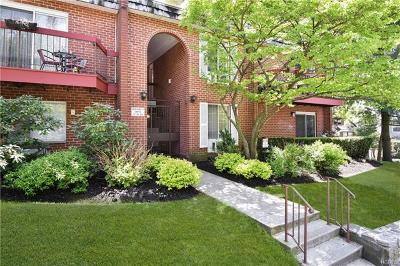 White Plains Condo/Townhouse For Sale: 55 North Broadway #Bldg 3 -