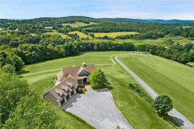 Pine Plains Single Family Home For Sale: 3978 Route 199