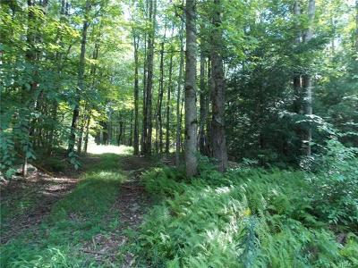 Greenfield Park NY Residential Lots & Land For Sale: $315,000
