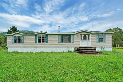 Delaware County Single Family Home For Sale: 5015 Houck Mountain Road
