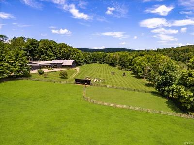 Dutchess County Single Family Home For Sale: 5 Kennel Road