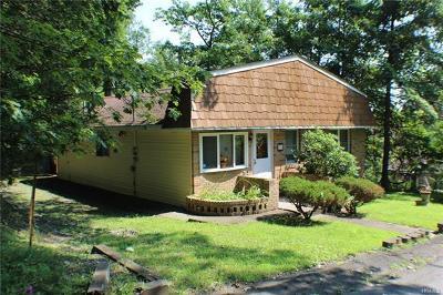 Wurtsboro Single Family Home For Sale: 38 Aldow Street