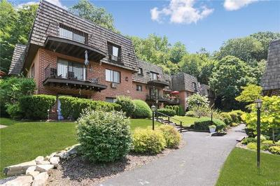 Ossining Condo/Townhouse For Sale: 4 Briarcliff Drive #41