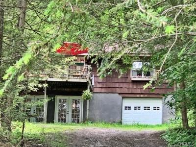 Glen Spey Single Family Home For Sale: 47 Power House Road