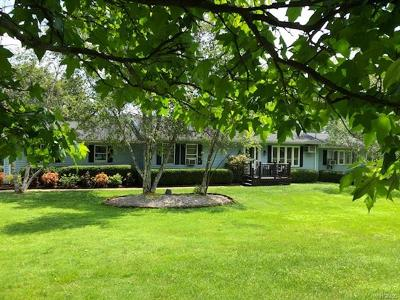Single Family Home For Sale: 262 Menges Road