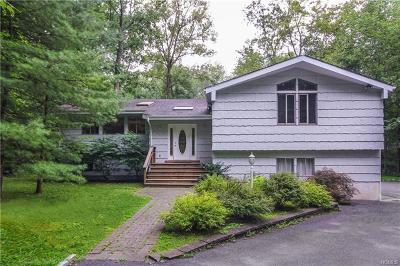 Westchester County Single Family Home For Sale: 31 Nichols Road