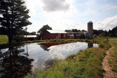 Jeffersonville Single Family Home For Sale: 17 Fuhrer Road