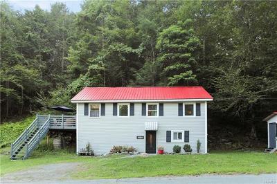 Wurtsboro Single Family Home For Sale: 513 Pine Kill Road