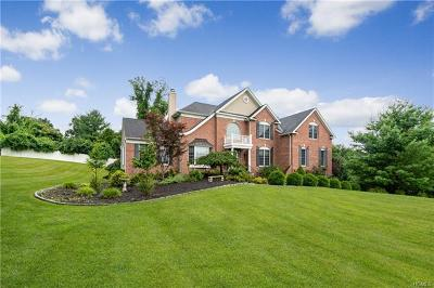 Dutchess County Single Family Home For Sale: 42 Logans Way