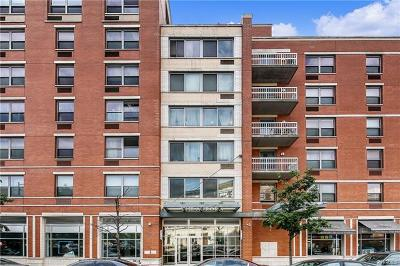 Bronx Condo/Townhouse For Sale: 837 Washington Avenue #6E