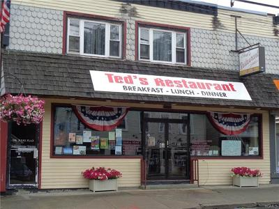 Commercial For Sale: 4896 State Route 52