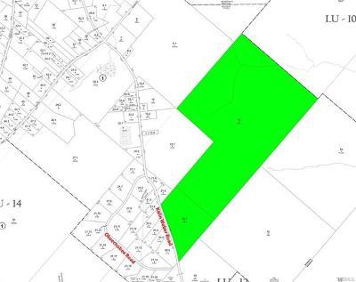 Residential Lots & Land For Sale: (11.-1-14) Kalin Weber Road