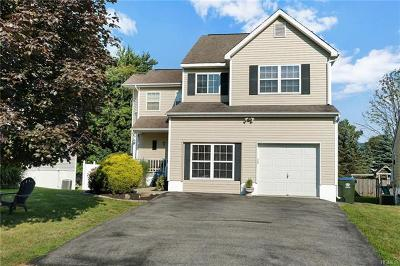 Washingtonville Single Family Home For Sale: 34 Alexander Drive