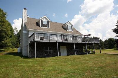 Cochecton Single Family Home For Sale: 519 County Road 114