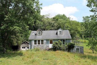 Delaware County Single Family Home For Sale: 9087 County Hwy 28