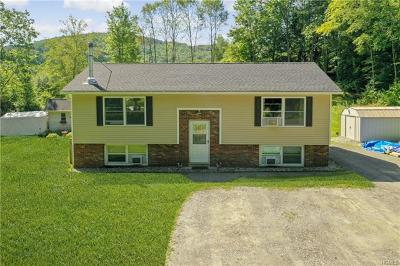 Dover Plains Single Family Home For Sale: 21 Cooperstown Road