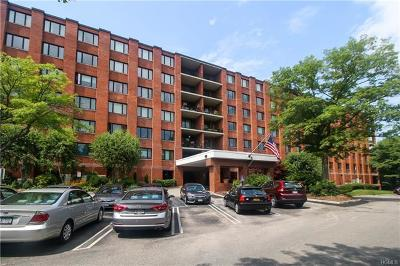 Ossining Co-Operative For Sale: 16 Rockledge Avenue #6J2