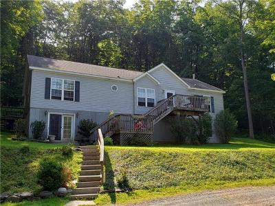 Livingston Manor, Roscoe Single Family Home For Sale: 356 Benton Hollow Road