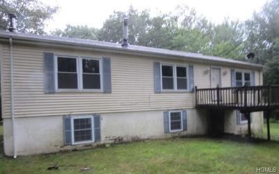 Wurtsboro Single Family Home For Sale: 32 Sarine Road