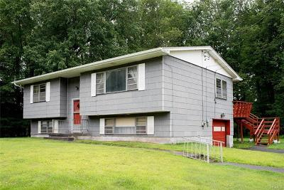 South Fallsburg Single Family Home For Sale: 7 Tierney Place