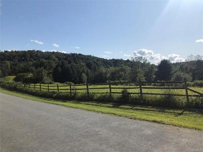 Residential Lots & Land For Sale: (28.-1-39.3) Jaketown Road