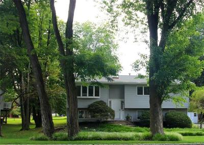 Rockland County Single Family Home For Sale: 4 Woodlake Drive