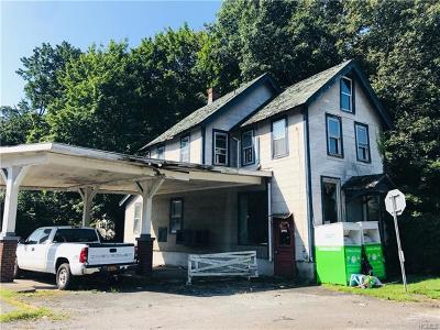 Westchester County Commercial For Sale: 3176 Albany Post Road