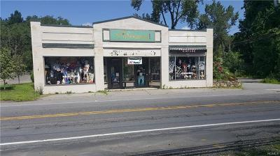 Westchester County Commercial For Sale: 295 Bedford Road