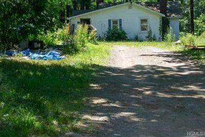 Wurtsboro Single Family Home For Sale: 83 Longview Trail