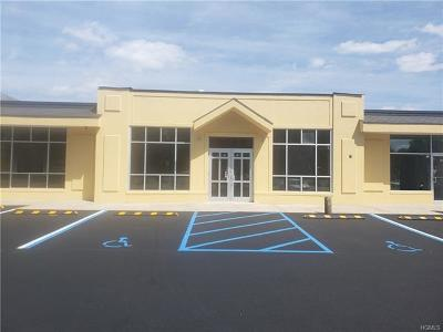 Orangeburg Commercial For Sale: 323 Route 303