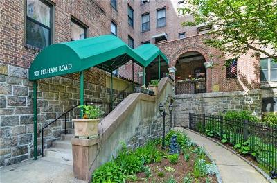 New Rochelle Co-Operative For Sale: 100 Pelham Road #4G