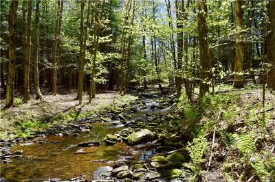 Parksville NY Residential Lots & Land For Sale: $15,500