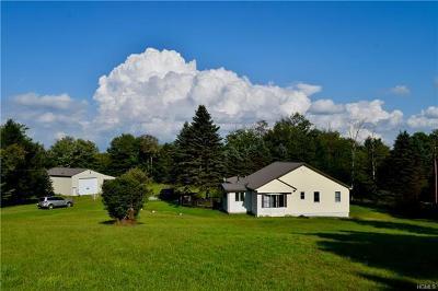 Livingston Manor, Roscoe Single Family Home For Sale: 76 Schleiermacher Road