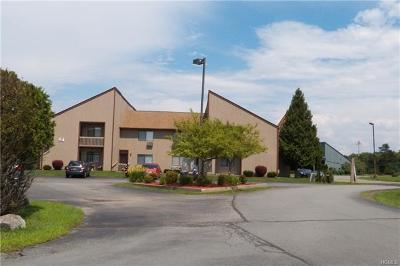 Orange County, Sullivan County, Ulster County Rental For Rent: 54 Davos Pointe A-2
