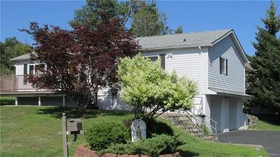 Rock Hill NY Single Family Home For Sale: $275,000