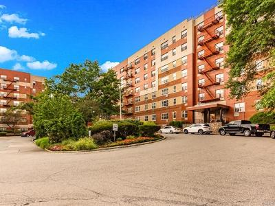 Yonkers Co-Operative For Sale: 7 Balint Drive #311
