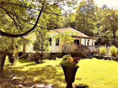 Sullivan County Single Family Home For Sale: 47 Eldridge Street South