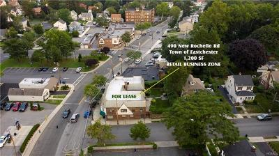 Westchester County Commercial For Sale: 490 New Rochelle Road