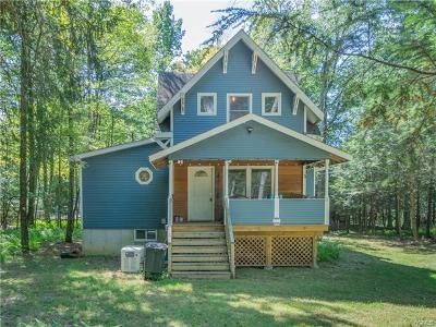 Wurtsboro Single Family Home For Sale: 407 Yankee Lake Road